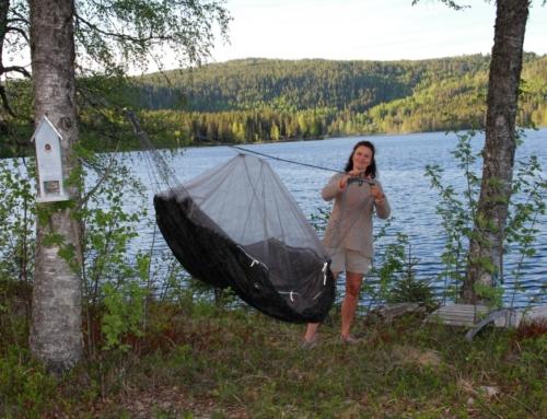 sommer, gode venner og en hammock ved vannet …